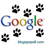 Que es Google panda